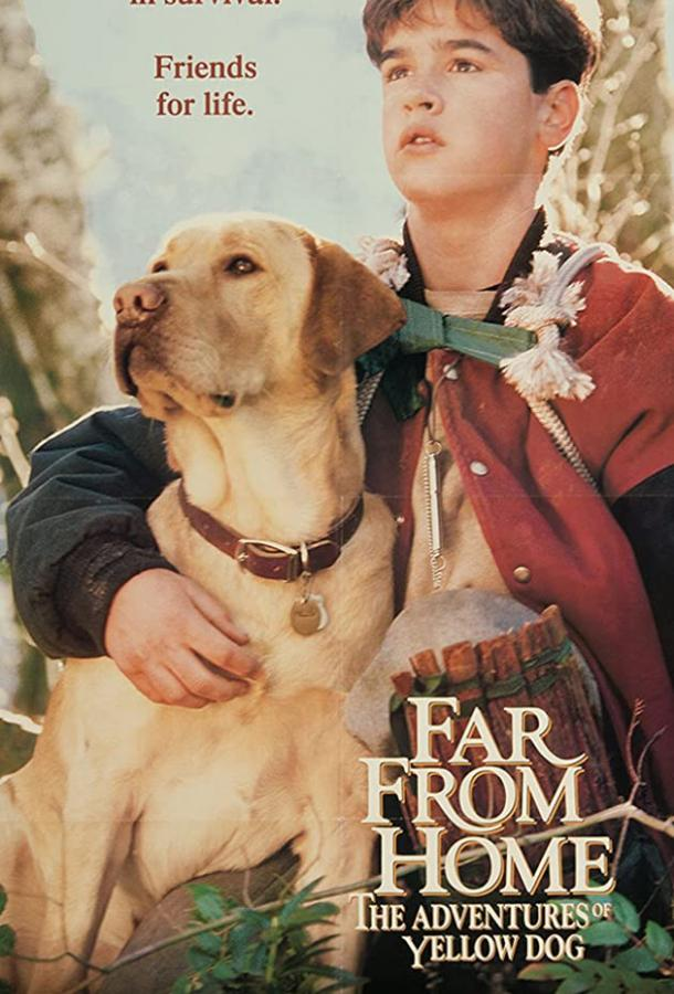 Далеко от дома: Приключения желтого пса / Far from Home: The Adventures of Yellow Dog (1994)