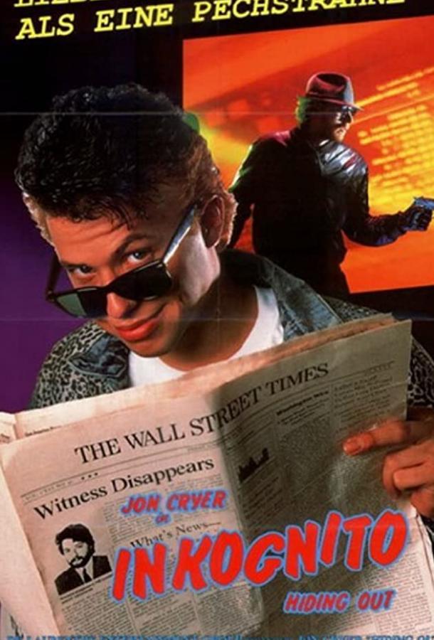 Игра в прятки / Hiding Out (1987)