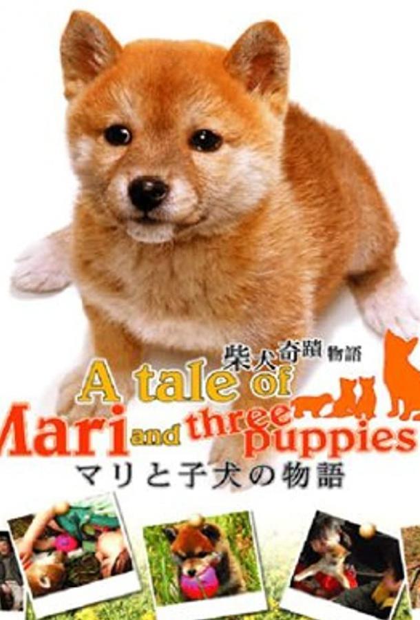 История Мари и трех щенков (2007)