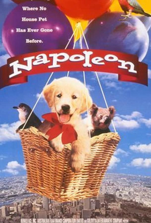 Наполеон (1995)