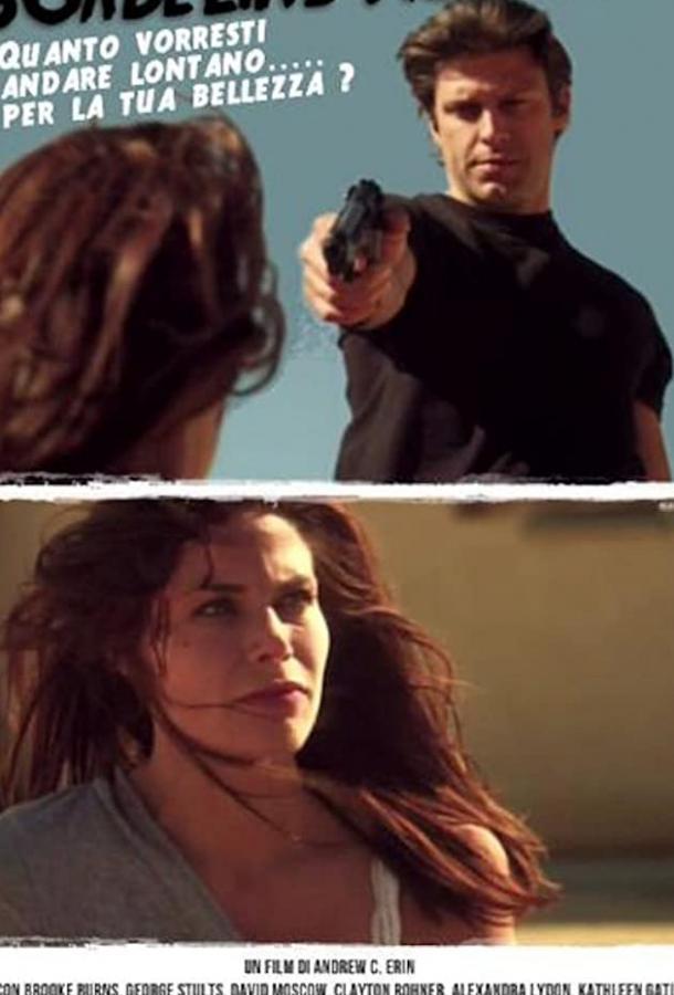 Жертва красоты (ТВ) / Borderline Murder (2011)