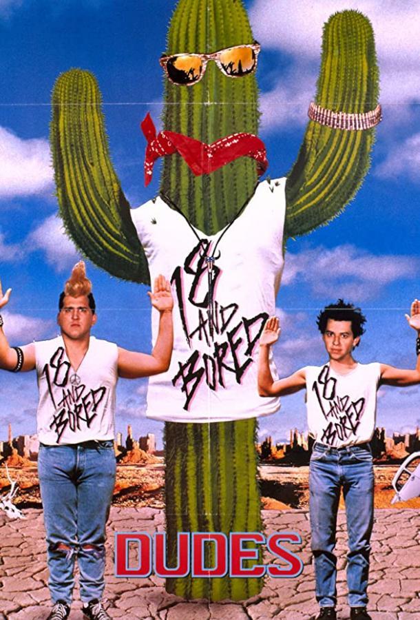 Стиляги / Dudes (1987)
