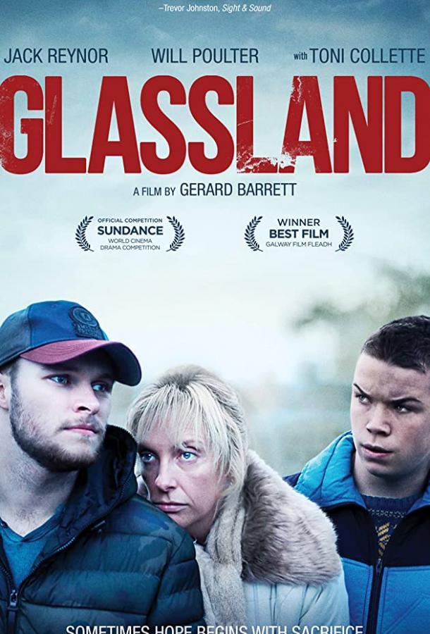 Гласленд / Glassland (2014)