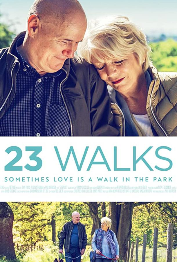 23 прогулки