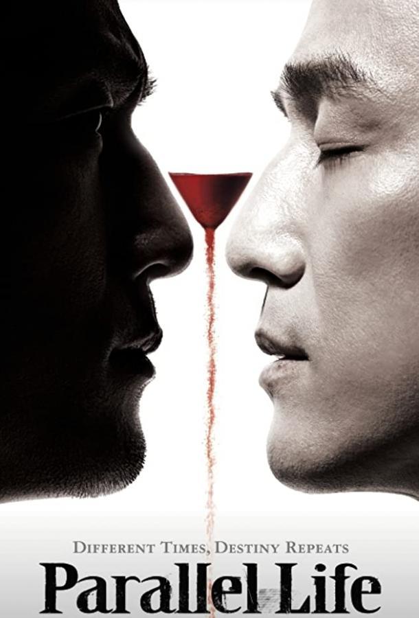Параллельная жизнь / Pyeonghaeng iron (2010)