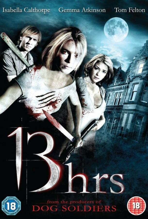 13 часов / 13 Hrs (2010)