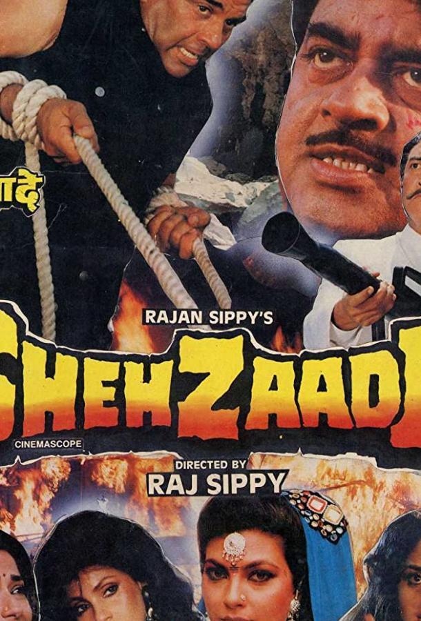 Преступник / Shehzaade (1989)