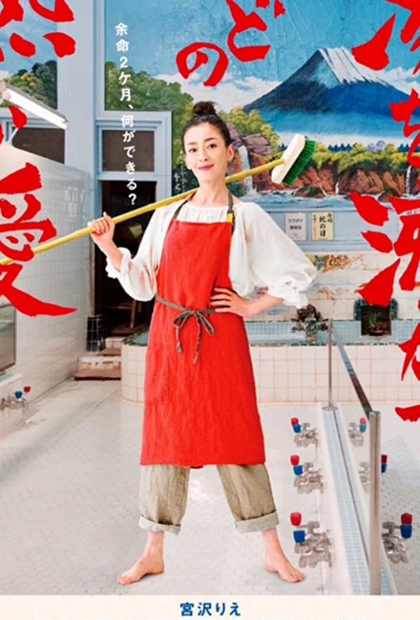 Её любовь кипятит воду / Yu wo wakasuhodo no atsui ai (2016)