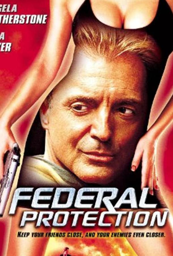 Федеральная защита (ТВ) / Federal Protection (2001)