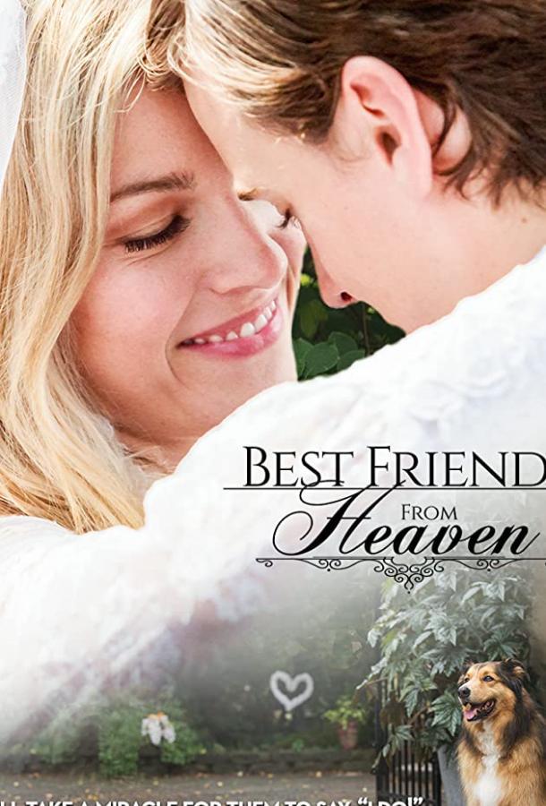 Лучший друг с небес