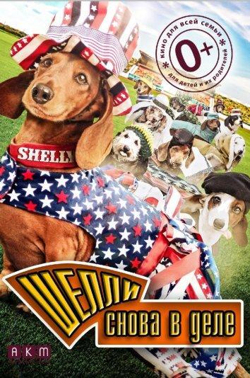 Шелли снова в деле / Wiener Dog Internationals (2015)