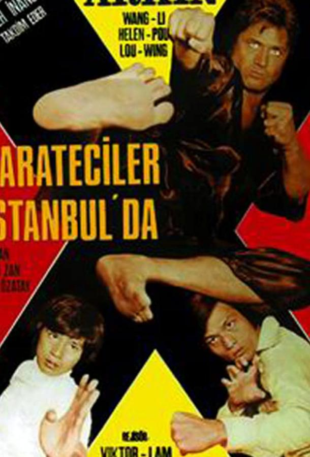 Каратисты в Стамбуле смотреть онлайн