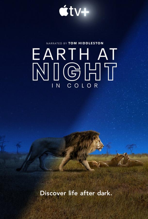 Земля ночью в цвете / Earth at Night in Color (2020) смотреть онлайн 1 сезон