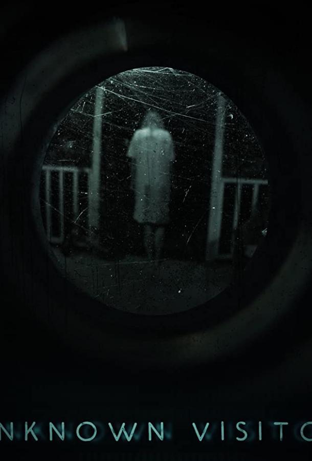 Незнакомый гость / Unknown Visitor (2019) смотреть онлайн