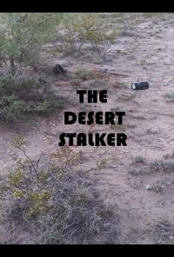 Сталкер в пустыне