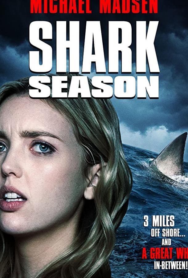 Shark Season 2020 смотреть онлайн в хорошем качестве