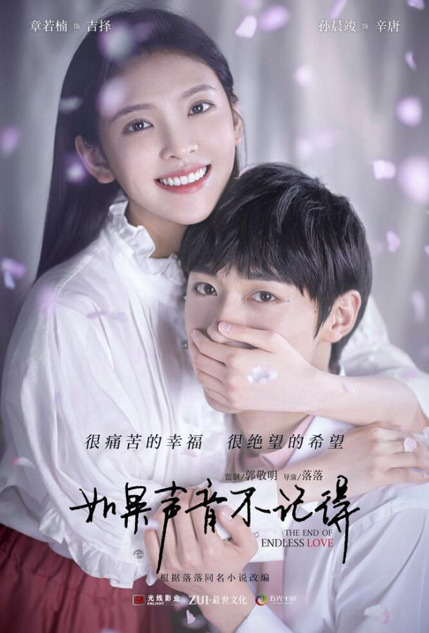 Конец бесконечной любви (2020)