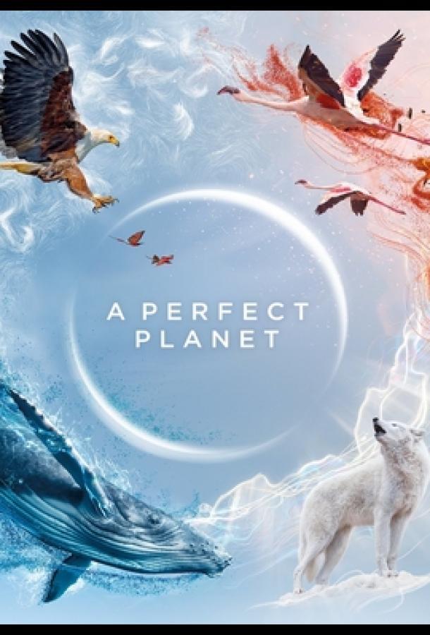 Идеальная планета (2021)