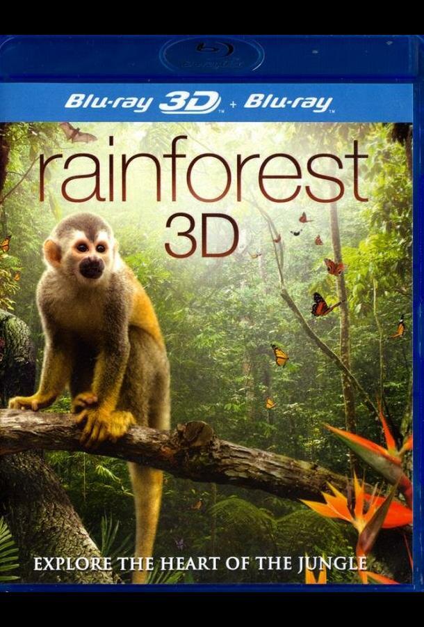 Тропический лес / Fascination Rainforest (2012)