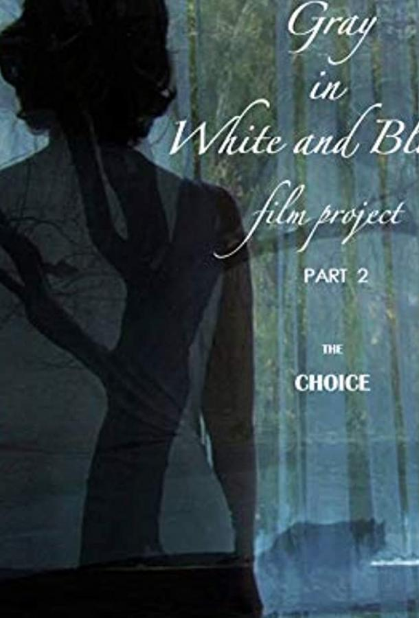 Серый в чёрно-белом, часть 2: Выбор / Gray in White and Black Film Project part 2: The Choice (2019) смотреть онлайн