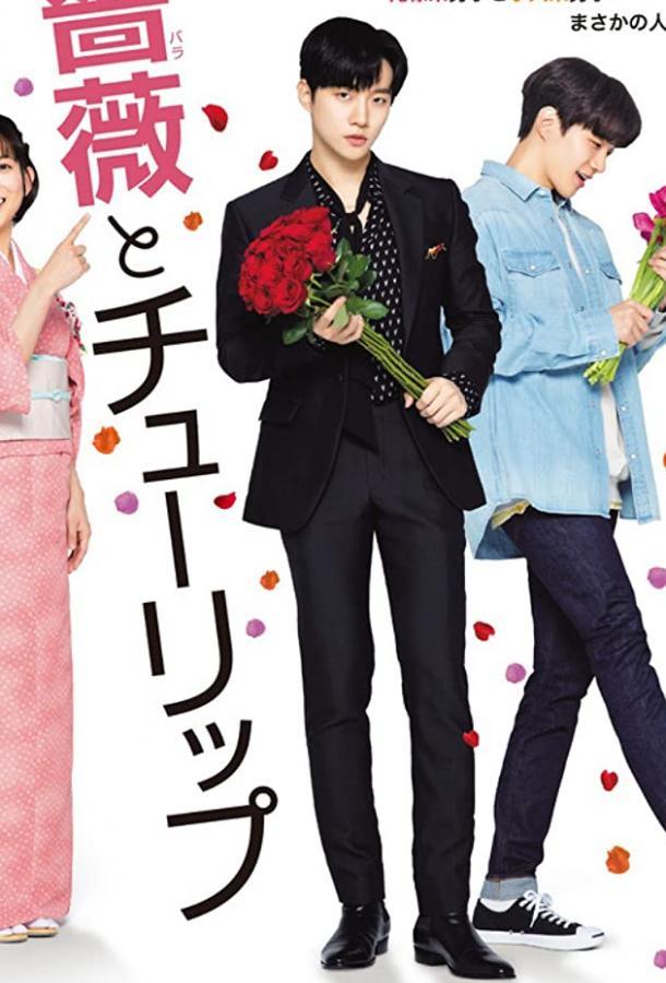 Роза и тюльпан (2019) HD