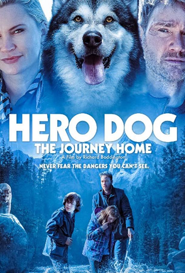 Собака-герой: путешествие домой (2021) смотреть онлайн в хорошем качестве