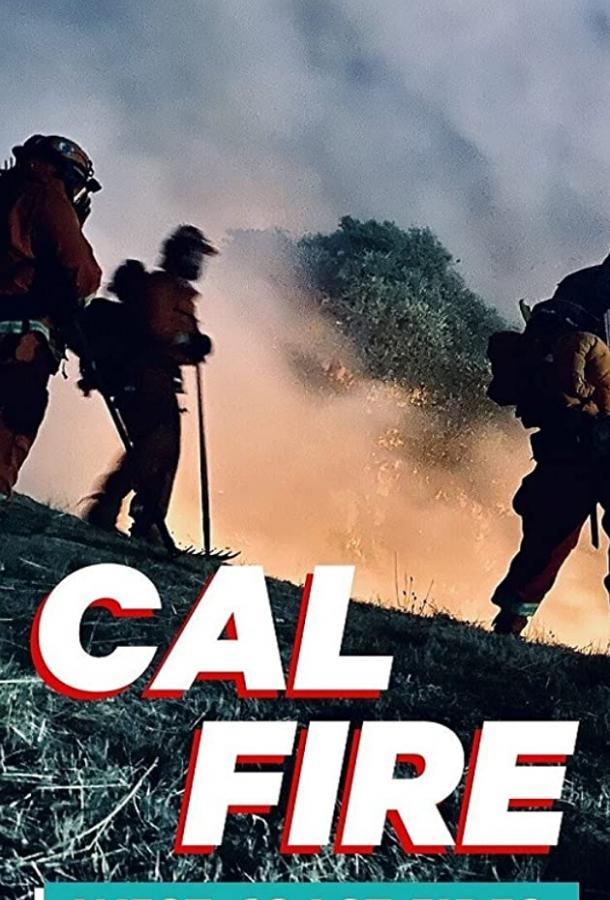 Сериал Discovery. Калифорния в огне (2021) смотреть онлайн 1 сезон