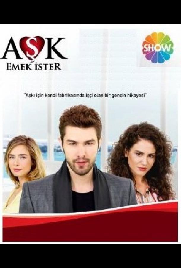Сериал Любовь требует усилий (2013) смотреть онлайн 1 сезон