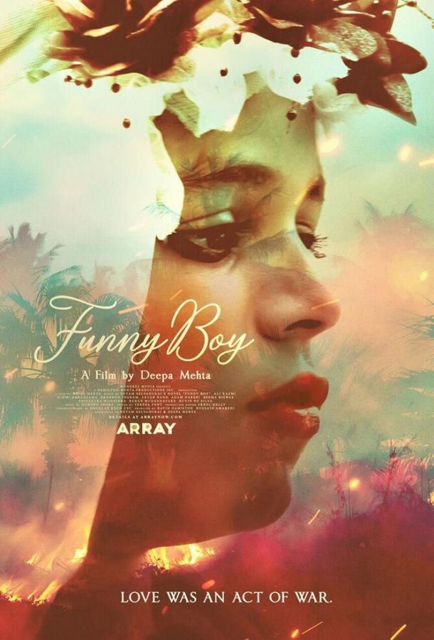 Забавный мальчик / Funny Boy (2020) смотреть онлайн