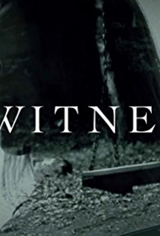 Сериал Я, свидетель (2017) смотреть онлайн 1 сезон