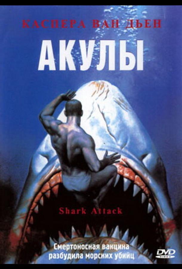 Акулы / Shark Attack (1999)