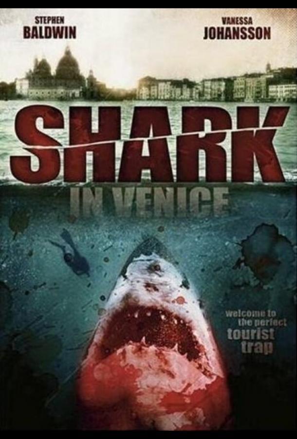 Акула в Венеции / Shark in Venice (2008)