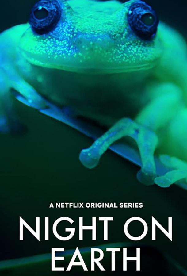 Ночь на Земле (2020) смотреть онлайн 1 сезон все серии подряд в хорошем качестве