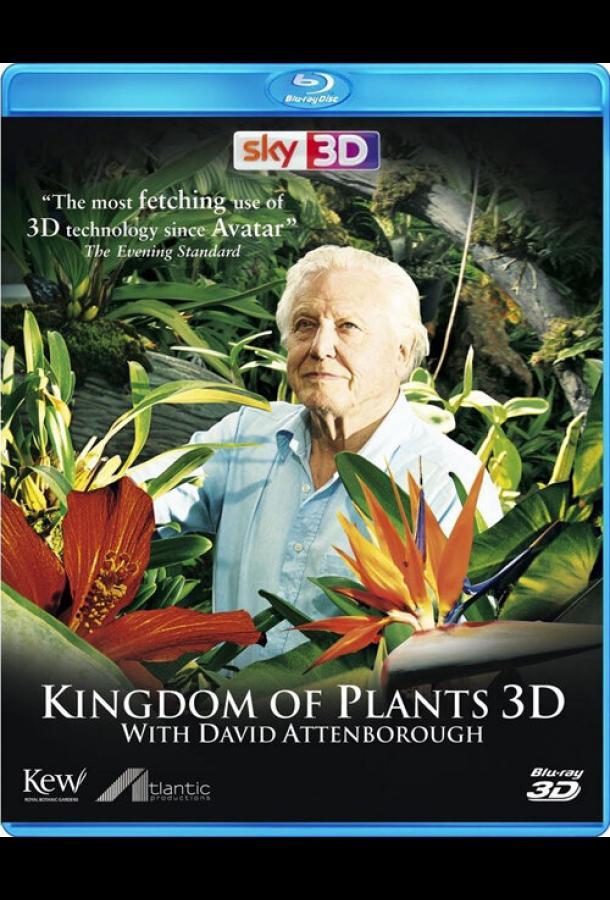В королевстве растений / Kingdom of Plants 3D (2012)