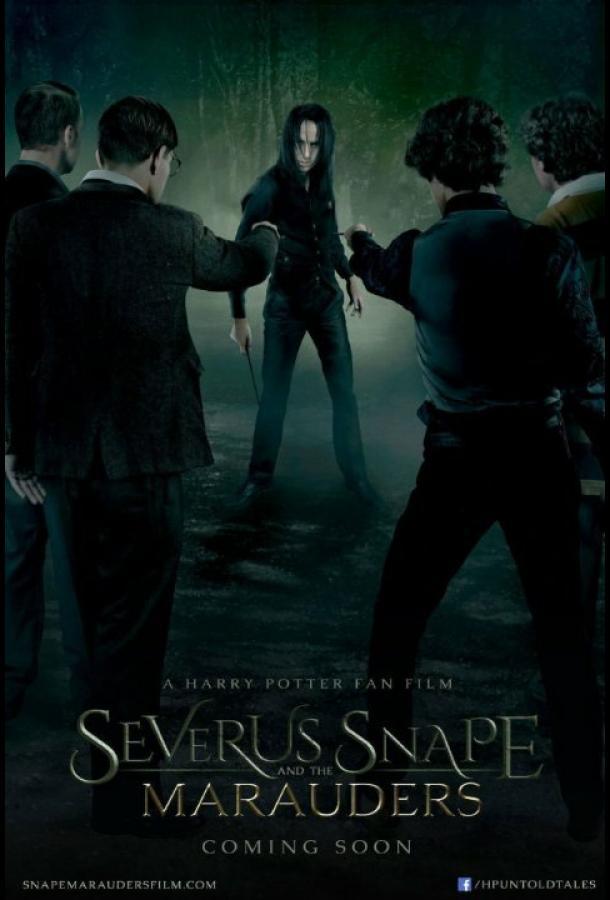 Северус Снегг и Мародеры / Severus Snape and the Marauders (2016)