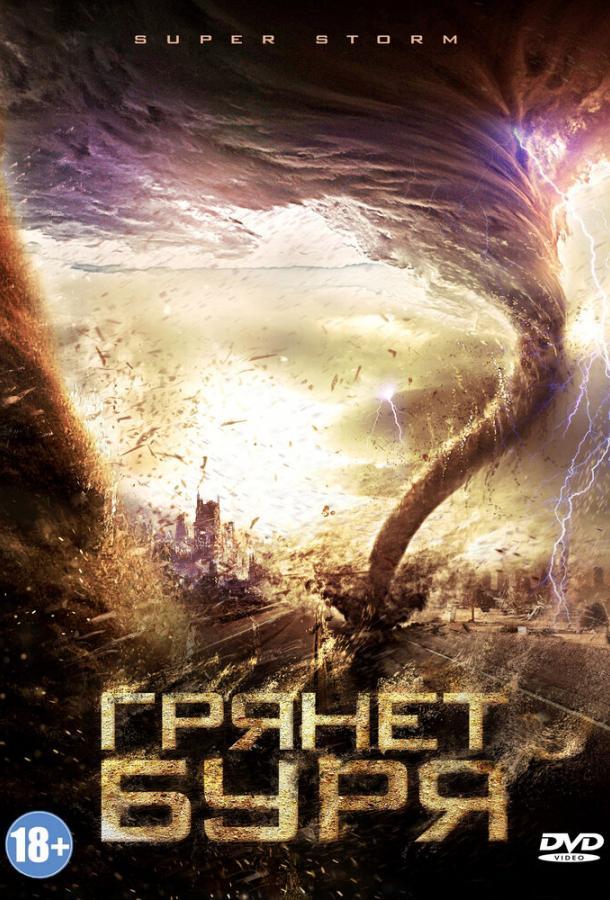 Грянет буря / Mega Cyclone (2011)