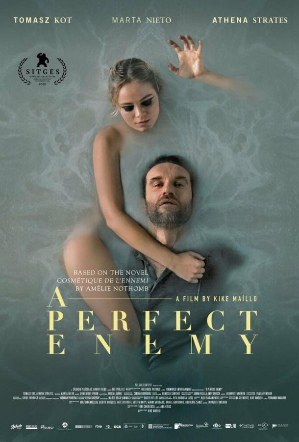 Идеальный враг (2020) смотреть онлайн в хорошем качестве