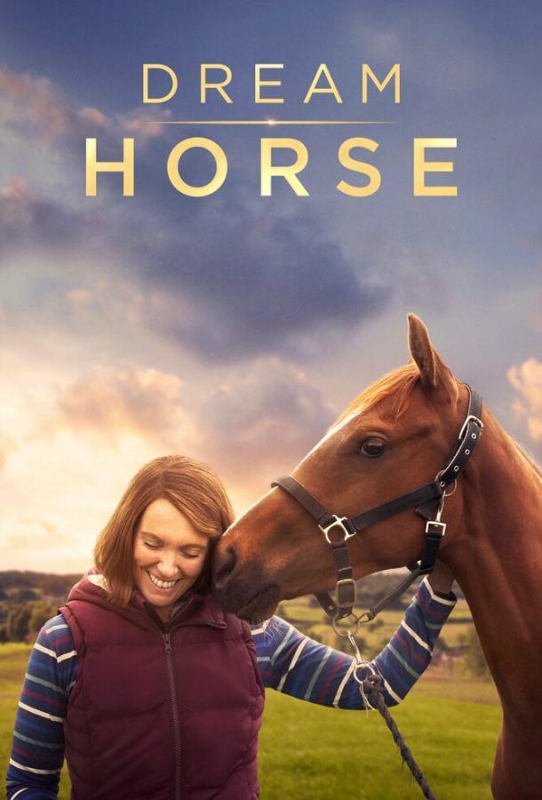 Лошадь мечты (2020) смотреть онлайн в хорошем качестве