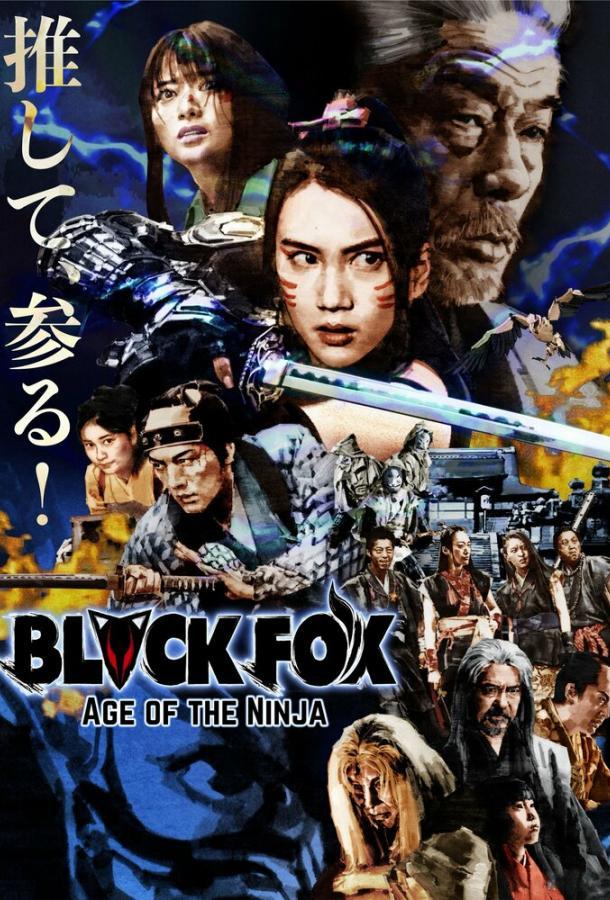 Чёрная лиса: Эпоха ниндзя (2019) смотреть онлайн