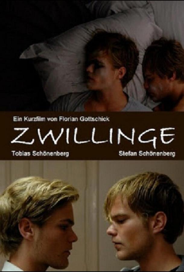 Близнецы / Zwillinge (2010)