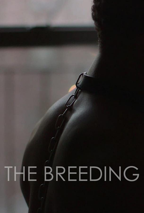 Бридинг (2018) смотреть онлайн