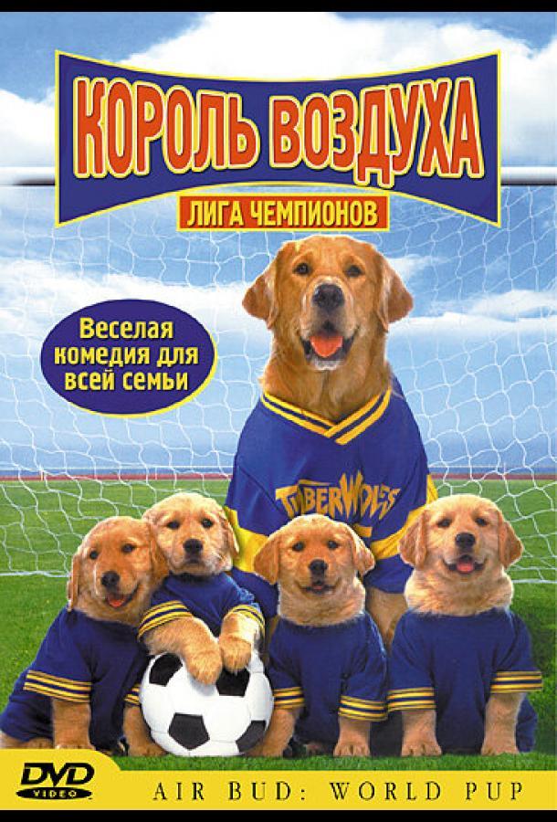 Король воздуха: Лига чемпионов / Air Bud: World Pup (2000) смотреть онлайн