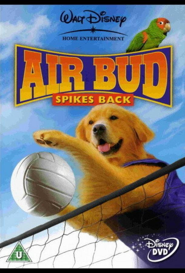 Король воздуха: Возвращение / Air Bud: Spikes Back (2003) смотреть онлайн