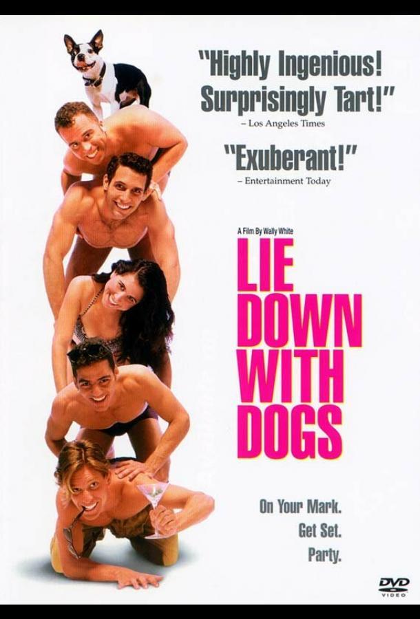 Лечь с собаками (1995) смотреть бесплатно онлайн
