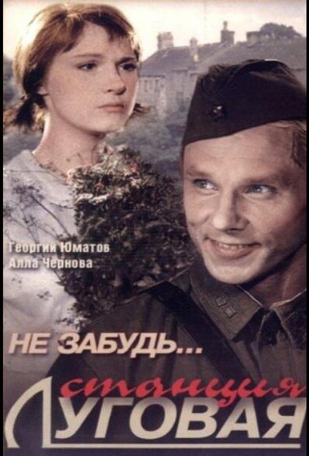 Не забудь... станция Луговая (1966) смотреть онлайн