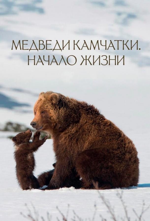 Медведи Камчатки. Начало жизни (2018)