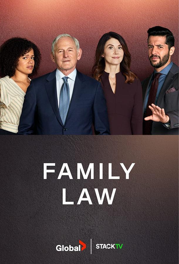 Сериал Семейная юрфирма (2021) смотреть онлайн 1 сезон