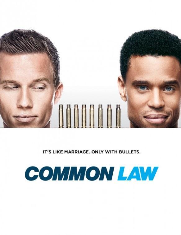 Общее дело / Common Law (2012)