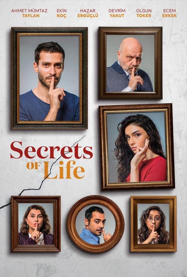 Секреты жизни (2017)