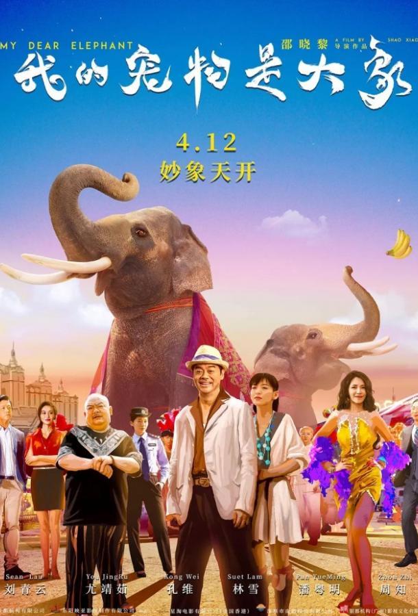 Дорогие мои слоны (2019)